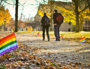 LGBT college students