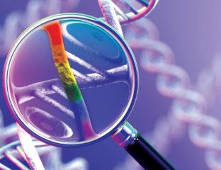 LGBT genetic link