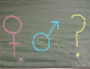 Queer sex education