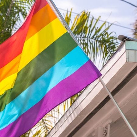 LGBT households more affected by pandemic economic effects: Census