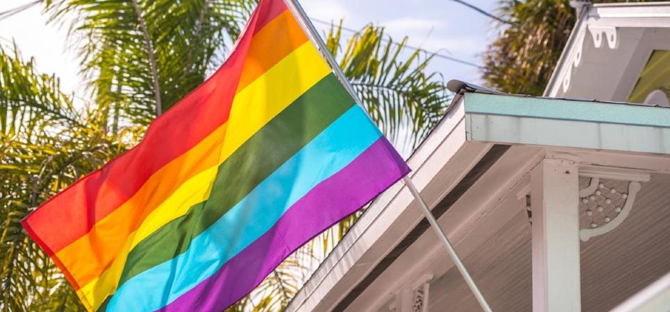 LGBT households